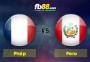 BẢNG C – FIFA WORLD CUP 2018 : Nhận định Pháp vs Peru vào lúc 19h ngày 21/06
